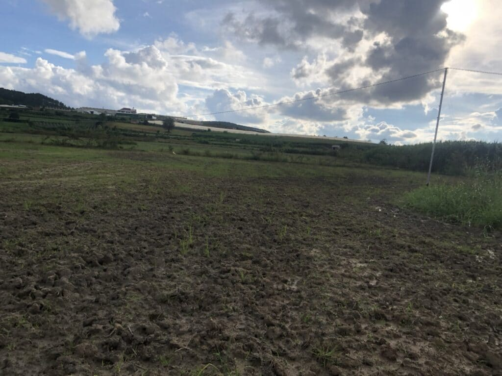 mua bán đất nền
